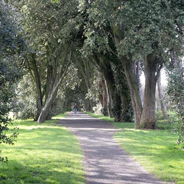 Saint Anne's Park - Dublin